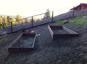 First I built two 4x10 foot raised beds using 2x12 inch pressure-treated lumber.